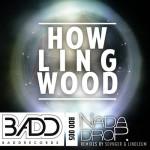 NaDaDrop – Da Howl (Linoleum Remix)