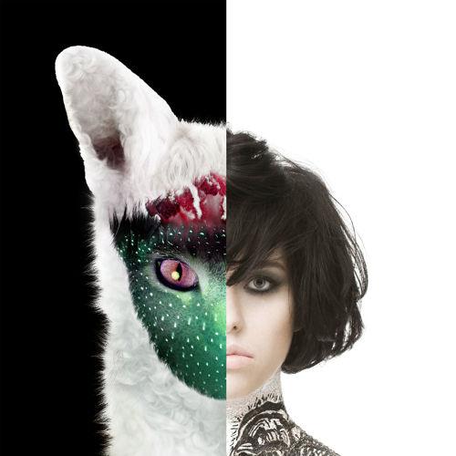 Kimbra X Galantis - Settle Down (U&I) (Kalev Remix)